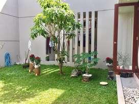 Dekat Pakuwon Mall,perkantoran