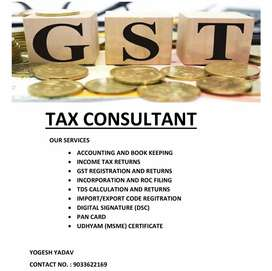 Professional services like GST, Income tax and Accounting