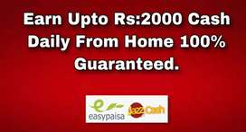 Work From Home Online Daily Basis Cash