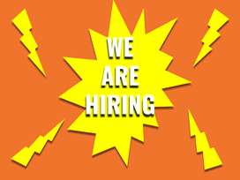 Openings For Banking BPO - Non - Voice Process - Day Shift