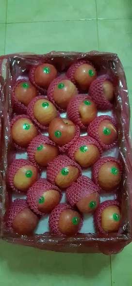 Ayo hidup sehat..makan Buah...sedia aneka buah segar grosir