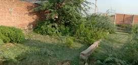 Pipori plot sell near DPS school.