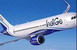 Indigo Airlines - Airport Job - Ground Staff Job. Great opportunity fo