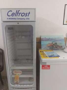 Deep freezer visi cooler