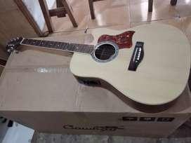 Gitar akustik elektrik new samick greg