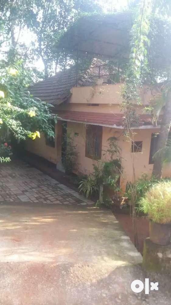 thiruthiyadu,near baby memorial hospital and sarovaram park