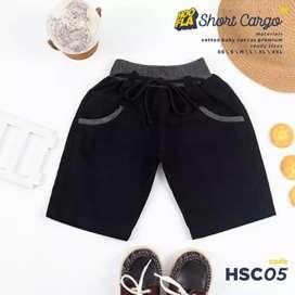 HSC (Hoofla Short Cargo)