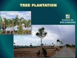 Open plots for sale having necessary amenities, Pollution free area.