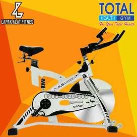 Sepeda Statis Spinning Bike JLS 8308 Murah