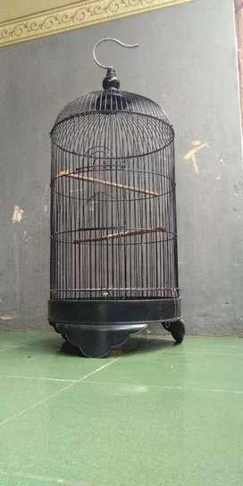 Kandang sangkar lovebird kenari dll