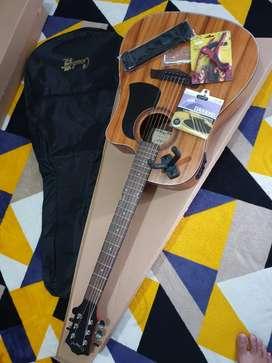 Gitar Akustik elektrik preamp tuner Original Camwood