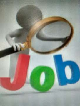 Need Candidate for the Customer Support Executive