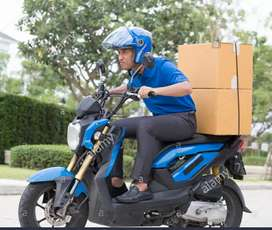 HIRING DELIVERY EXECUTIVE FOR REPUTED LOGISTIC COMPANY