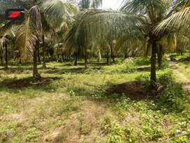 12 acre agricultural land for sale Palakkad, Kozhinjampara