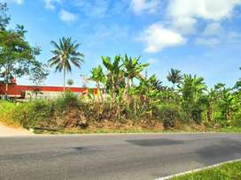 Tanah Pekarangan di Tepi Jalan Kaliurang Km 19