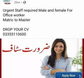 General office staff required for Rwp / ISB