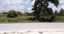 Tanah dijual di jalan Bungur Pangkalanbun