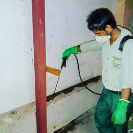 Pest control operator required for temporary basis.
