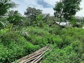 Jual tanah 8 Tumbuk Murah 1 Jam dari Kota Jambi