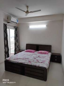 Fully furnished lavish lifestyle society apartment for rent