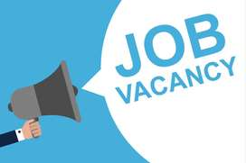 Opening in system administrator (NOC)