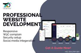 Affordable website development services, website design services