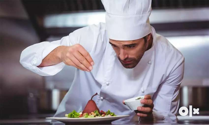 Need chef for 5* hotel in Delhi NCR 0