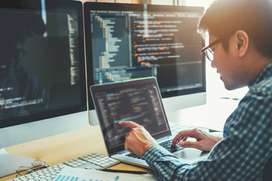 Required web developer experienced candidate