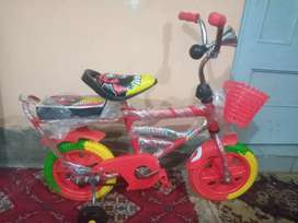 Bicycle New Condition