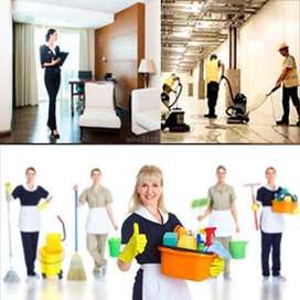 Hiring for Maid full time and Part time