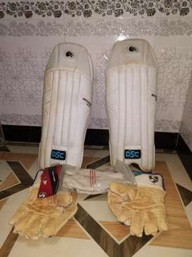 Wicket keeping gloves and pads