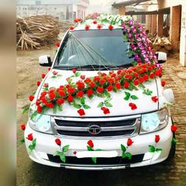 wedding car for doli with in less price