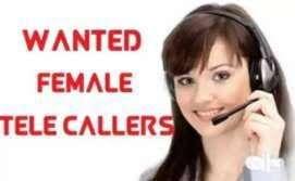 Female telecaller for medical equipment company