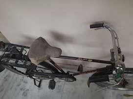 NELAM bicycle