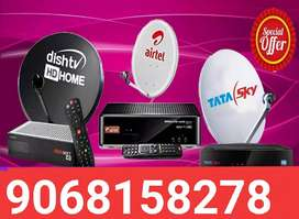 All DTH connection today call me