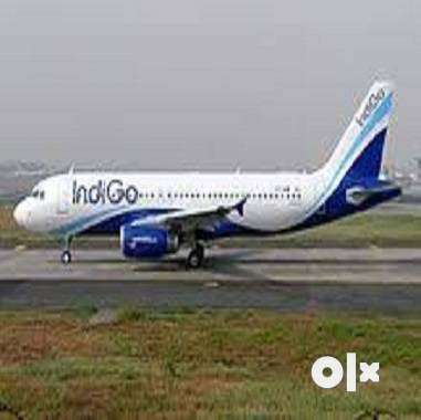 Airlines Job - indigo Airlines Opened @ CCE , Cabin Crew, Luggage Dept 0
