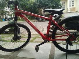 Sepeda gunung reebok limited edition
