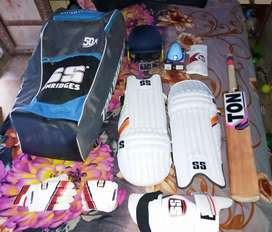 Cricket batting kit