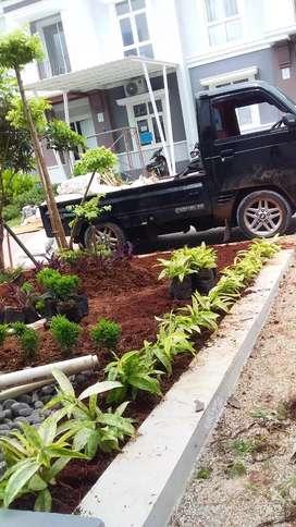 Pembuatan taman simple
