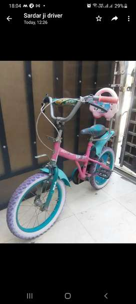 A beautiful Bicycle