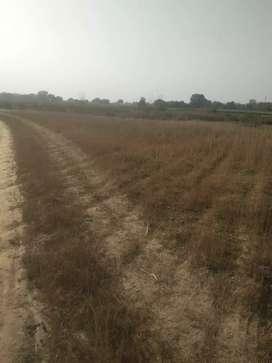 Exclusive plots in sangam valley