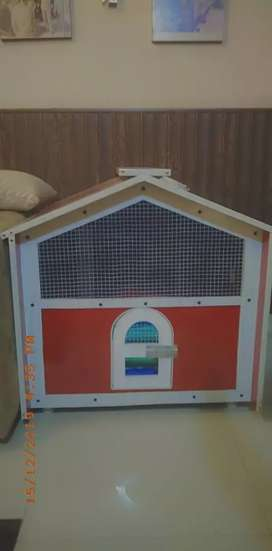 Brand new cat house for sale