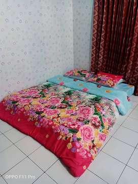 Sedia Bed Cover Nyaman Halus Kirim Malinau