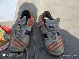 Spike cricket shoes