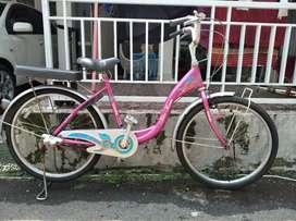 Jual sepeda wimcycle bisa ukuran 24