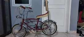 Sepeda anak low rider