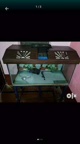 Big size aquarium for sale