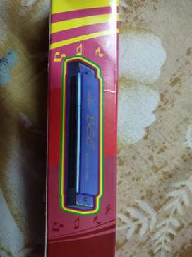 A magical harmonica only 2 month old with 48 hole sounds