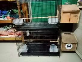 Cage with breeding box