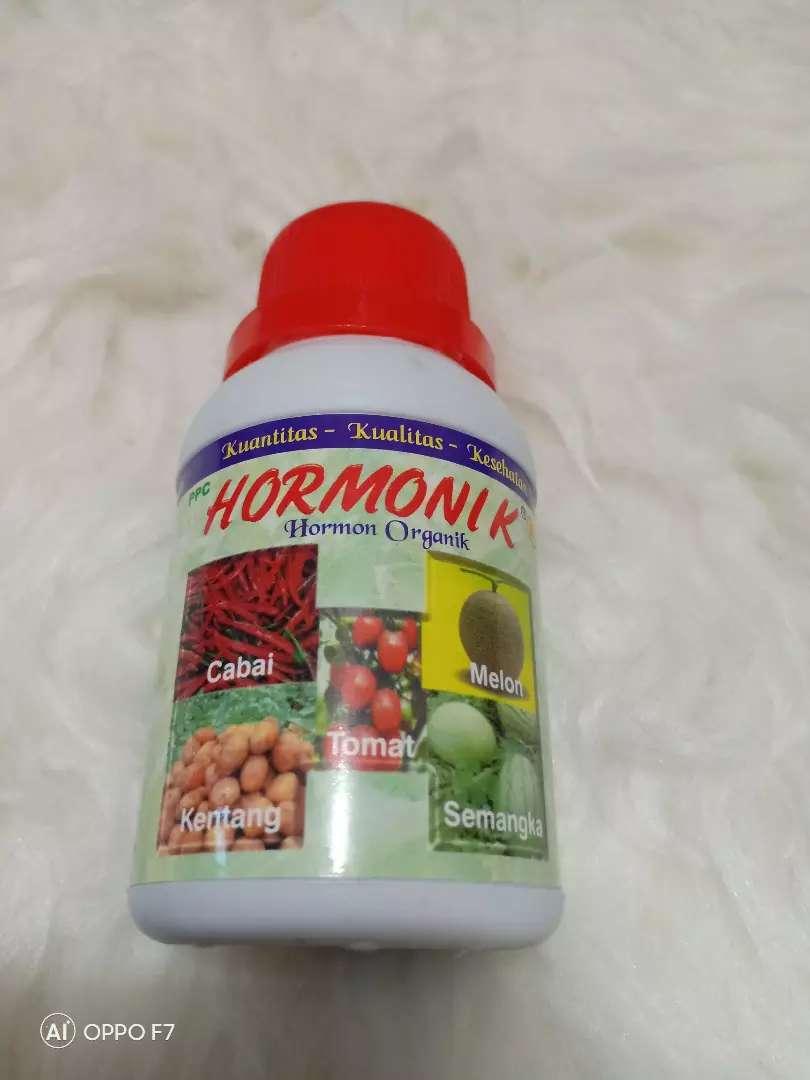 Hormonik nasa-Agen Nasa Bandung Cicaheum 0